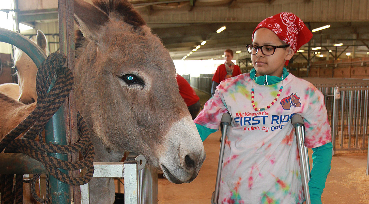 donkey girl crutches petting zoo